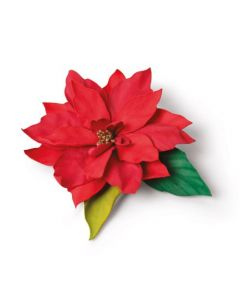 "Fustella Sizzix Thinlits ""Stella di Natale elegante"" - 664817"